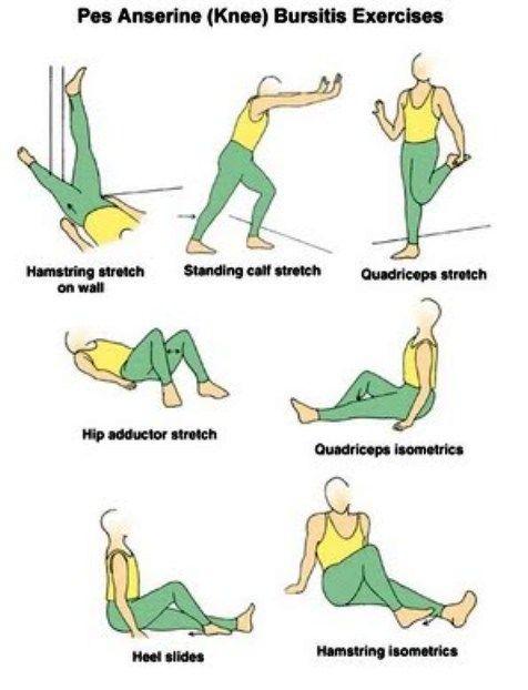 pes anserine bursitis exercises - Google Search