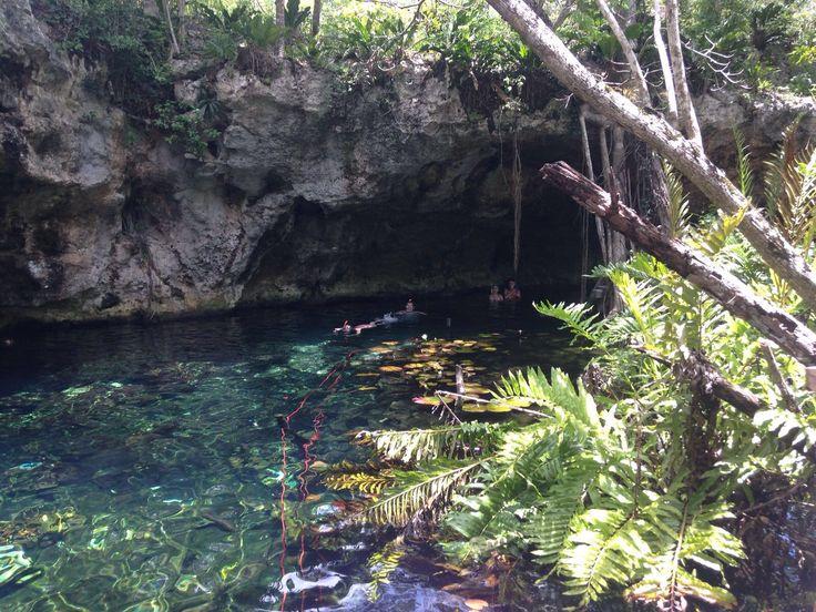 Quando sta mattina ci siamo svegliati, abbiamo pensato di sfruttare le ultime ore del noleggio della bicicletta per vedere almeno un Cenote. Cenote è il nome dato ad un tipo di grotta, con presenza…