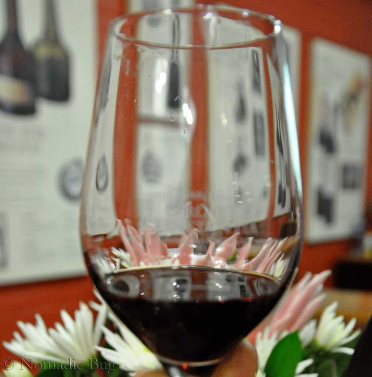 The Nectar Of The Gods, Groot Constantia, Constantia wine farm, Cape Town, south Africa Fun Things To Do In Cape Town This Summer Nomadic Existence