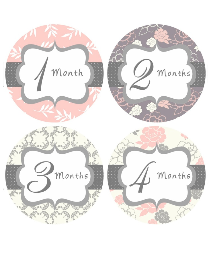 Monthly Onesie Stickers Baby Month Stickers Baby Girl Pink Grey Floral Onesie Stickers Month Stickers Baby Shower Gift Photo Prop Mary3-R. $12.00, via Etsy.