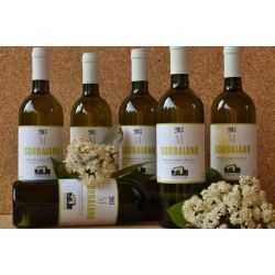 "€ 8,00 a bottle ""Antica Fattoria SORBAIANO"" Montescudaio Bianco DOC 2013 proposed in 6-bottle box"