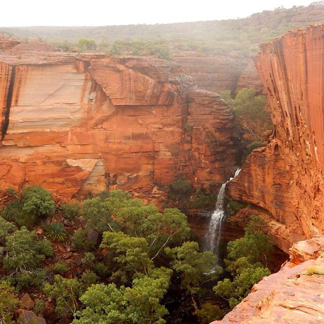 Kings Canyon in Watarrka National Park, #NorthernTerritory, during heavy rains in Central #Australia. Thanks to Amber Marshall for this photo.