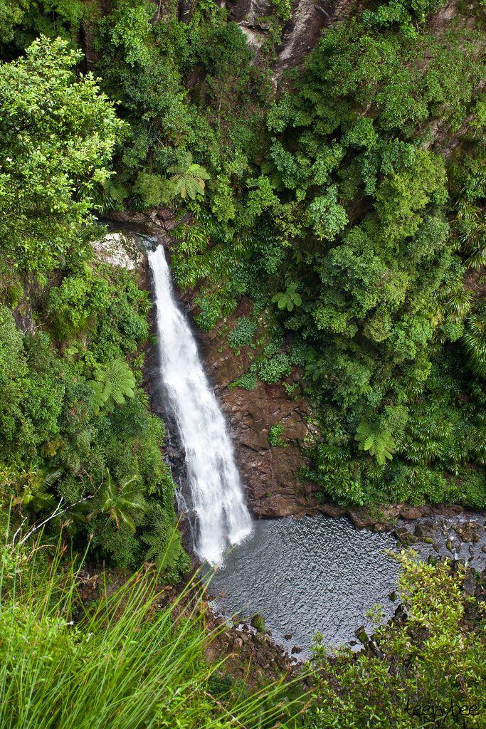Coomera Falls, Lamington National Park, Queensland, Australia