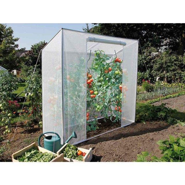 Les 25 meilleures id es concernant serre a tomate sur pinterest serre pour tomates serre - Serre pour tomates ...