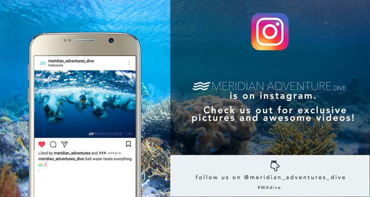 Meridian Adventures Dive is also on instagram! Just open the link below and give us a follow! 🐟🐋🐳🐟  https://www.instagram.com/meridian_adventures_dive/