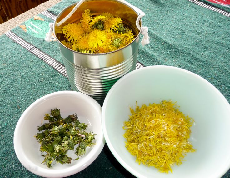 Dandelion blossoms are very aromatic, but they are difficult to preserve for later. If you try to dry them, they'd become puffs and fly away :). I like to enjoy them fresh as long as possible, i use them for sun-dandelion-water, adding to salads or sourdough pancakes