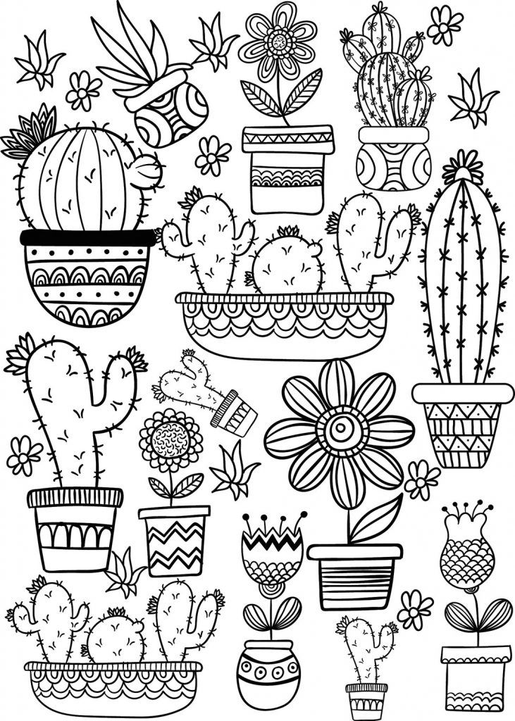 Succulent Coloring Pages Printable Adult Coloring Pages Easy