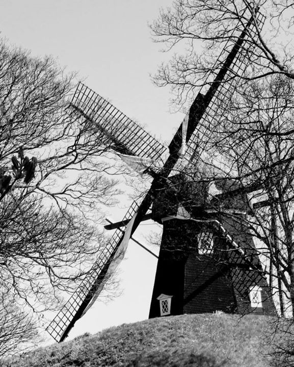 """""""Den gamle mølle"""" - møllen på Kastellet i København - et billed taget april 2017 og brugt til en serie pop art billeder som kan ses og købes på http://ift.tt/2se0upe http://ift.tt/2v69pem"""