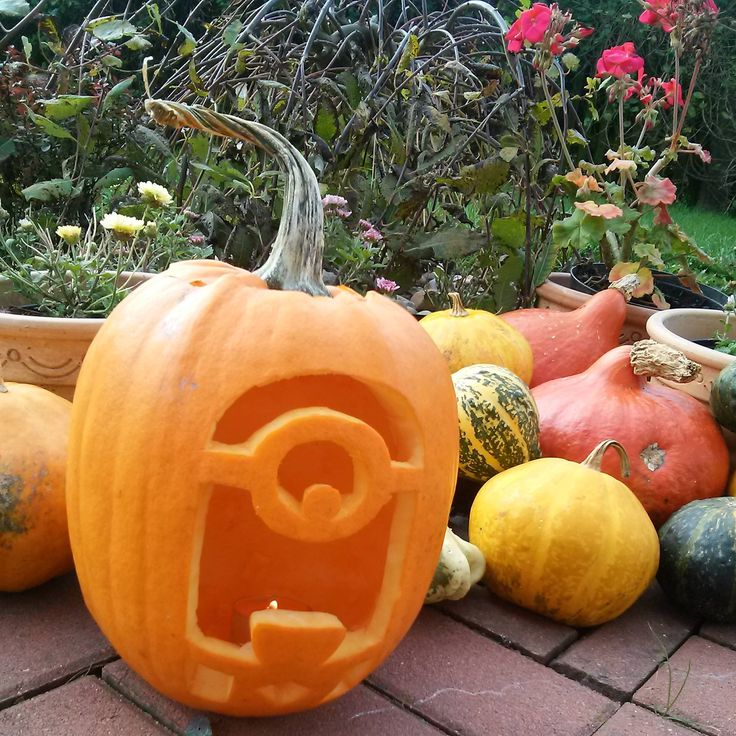 Carving at All Saints' Day.Minion from film Despicable Me. #pumpkin