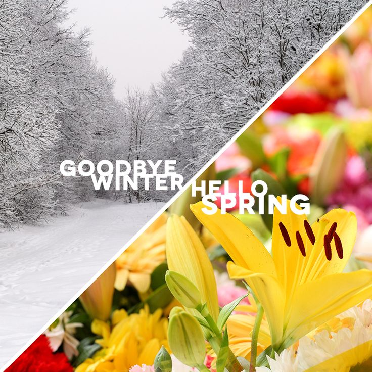 78 Best Facebook Cover Photos Images On Pinterest: Best Collection Of Goodbye Winter Hello Spring Pictures