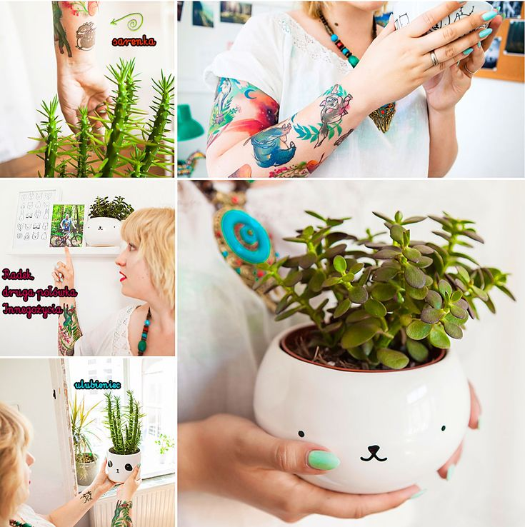 succulent, catus, plants, collage, moodboard, workspace, workshop, desk, homeoffice, office, interior design, interiors, colorful, photo: Zenja blog