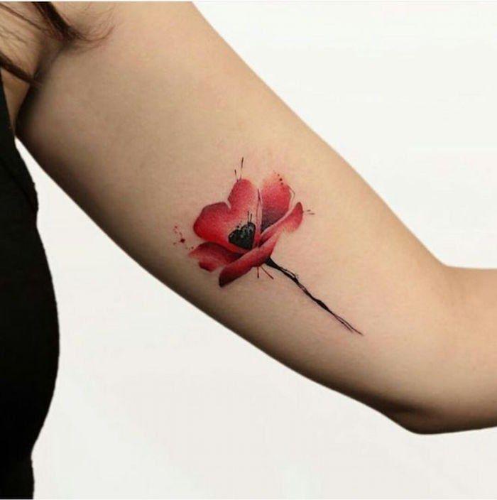 tatouage coquelicot – un champ de 52 modèles en photos   idee tattoo