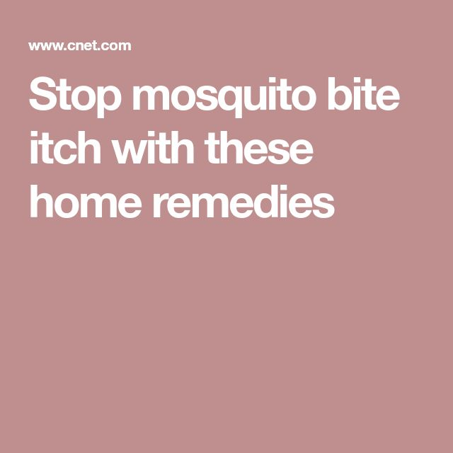 Stop mosquito bite itch with these home remedies