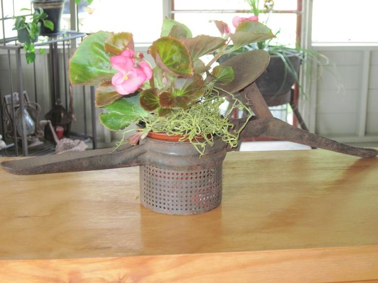 Rustic Potato ricer as planter!