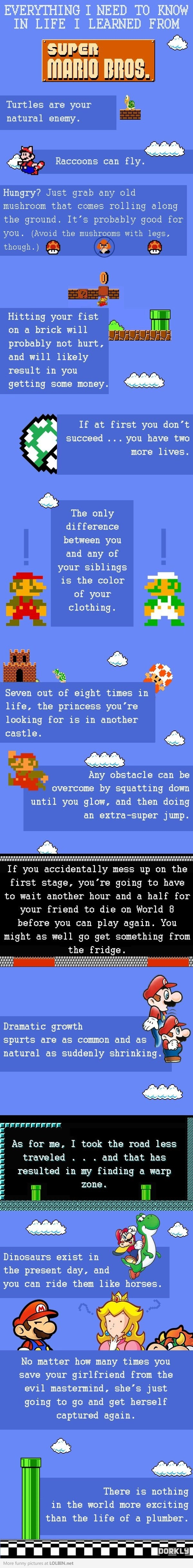 Everything I need to know in life, I learned from Super Mario Bros.