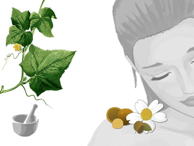 Crema viso leggera all'estratto di cetriolo