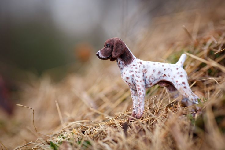 1:12 Dollhouse Miniature CJ German Shorthaired Pointer OOAK Artist Sculpted and Furred