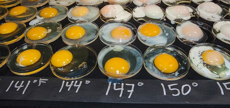 Temperatures for cooking eggs in oven