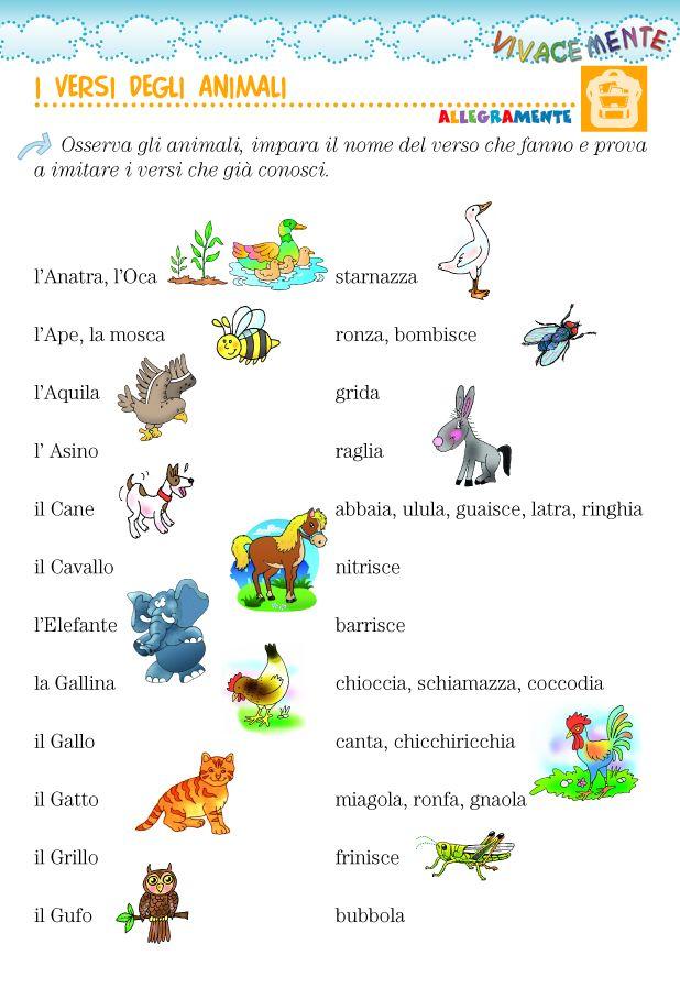 Conosci i versi degli animali? Ogni animale ha un suo modo di esprimersi. Il suo verso è caratteristico e ha un nome che spesso non ricord...