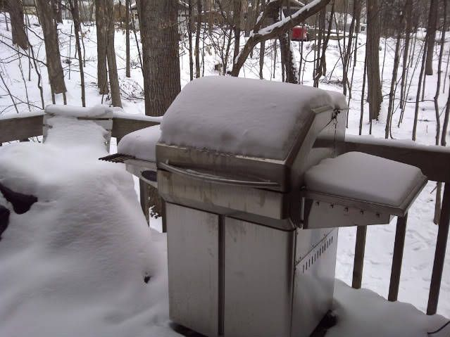 Wood Pellet Grill + Smoke even in the snow :) Memphis grills available at Olhausen! http://www.olhausengo.com/bbq.html#prettyPhoto
