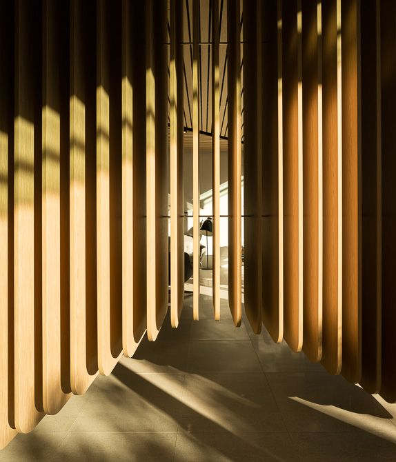 850 - Pedra Silva Arquitectos | Care Implant Clinic | Sidney, Australia (172 imgs)