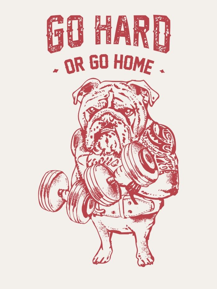 Go Hard or Go Home English Bulldog Art Print