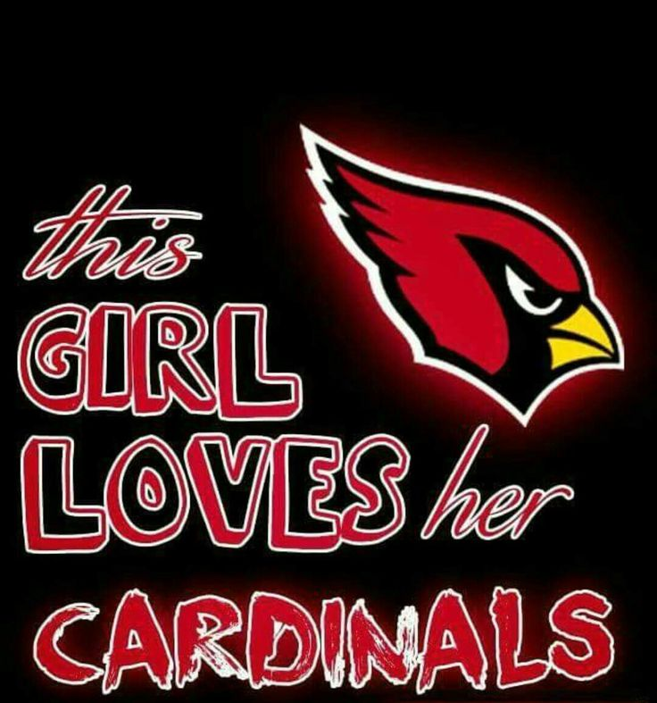 This Girl Loves her Arizona Cardinals #AZLadyBirds @ArizonaLadyBirds 2016 ❤