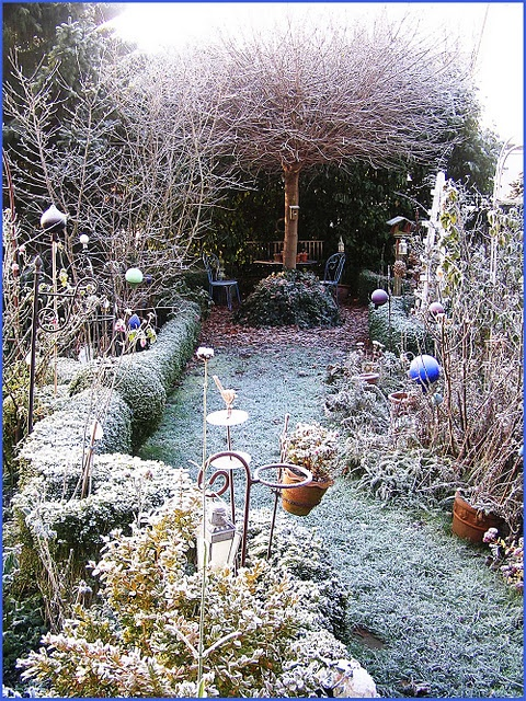 94 best winter garden images on pinterest winter