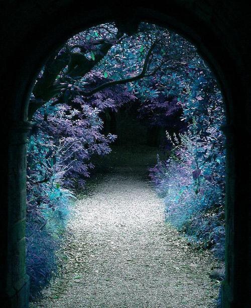 Forest Portal, Hever Castle, Kent, England photo via pixdaus