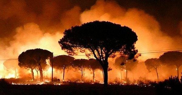 Μεγάλη φωτιά «καταπίνει» δάση στην Ισπανία