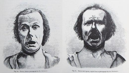 Darwin Correspondence Project » Darwin emotion experiment
