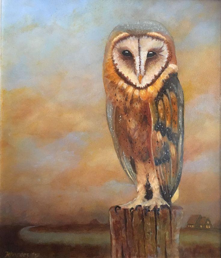 Barn owl, oil on panel 30 x 35 cm, Jehannes Hoogeveen 2017