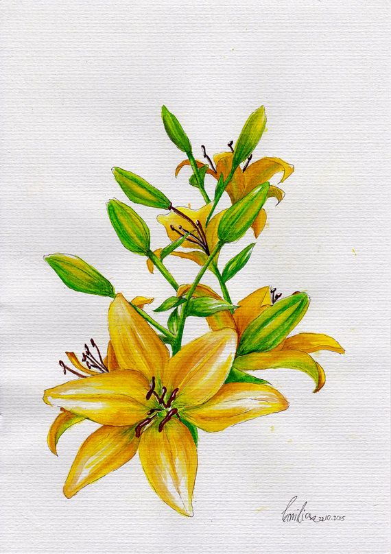 Original Watercolour Painting of Yellow Lilies  A4 by BlendWorks