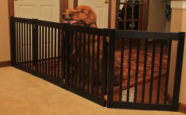 Dog owners with big houses (and even smaller apartments, too) sometimes need to prevent their dogs from entering certain areas of the house. Dog gates and playpens for dogs have been created specifically for this purpose. Now the question is, how to choose the right pet gates for dogs? #dogs #gates #homedecor