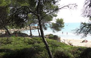 Sin duda alguna la mejor playa para iniciarse al naturismo, acompañado por tus hijos y ¡muy cerquita de Barcelona!