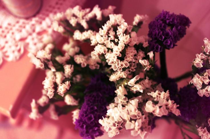Lilac by ATeresaSantos