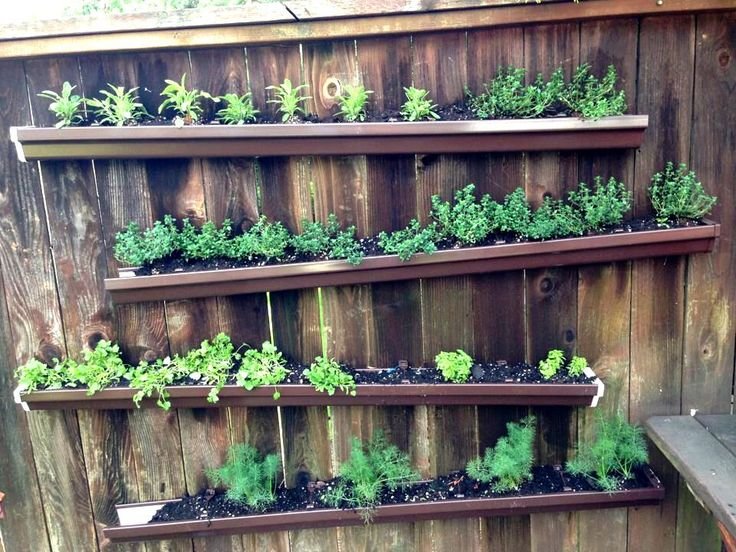 17 best images about herb wall on pinterest gardens Herb garden wall ideas