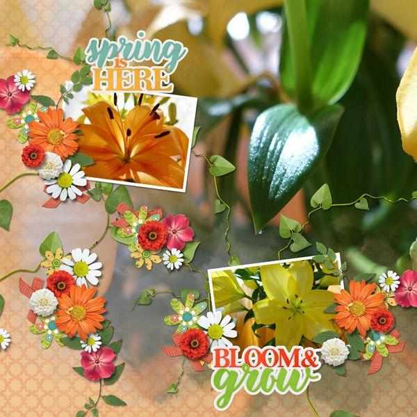 Suja-Bloom_and_Grow-600