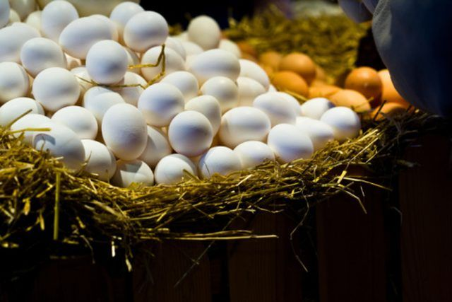 extract hyaluronic acid from egg shells