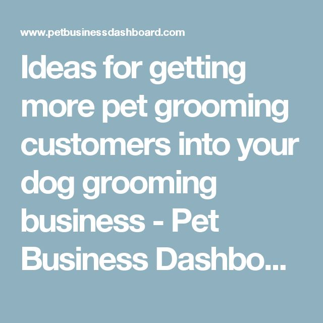 Ideas for getting more pet grooming customers into your dog grooming business - Pet Business Dashboard