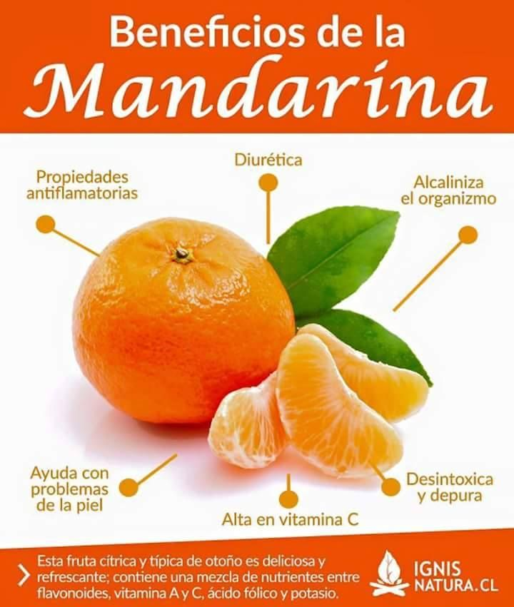 BENEFICIOS DE LA MANDARINA | MEDICINA NATURAL Y REMEDIOS