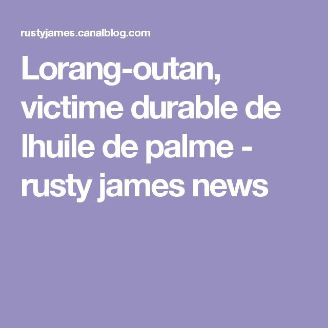 Lorang-outan, victime durable de lhuile de palme - rusty james news