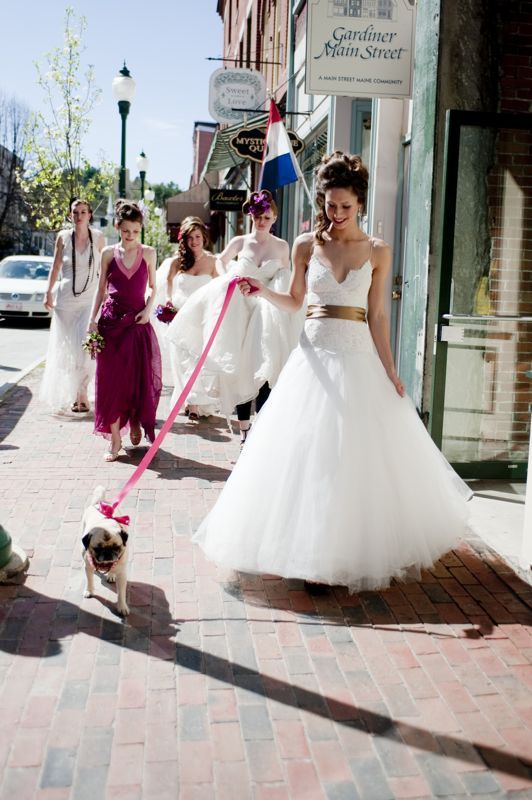 #Wedding pug ... Wedding ideas for brides & bridesmaids, grooms & groomsmen, parents & planners ... https://itunes.apple.com/us/app/the-gold-wedding-planner/id498112599?ls=1=8 … plus how to organise an entire wedding, without overspending ♥ The Gold Wedding Planner iPhone App ♥