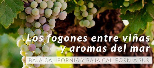 san Antonio de las Minas Ruta del vino Ensenada,Mexico. - Buscar con Google