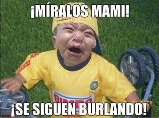 23d658e5358c5a746505c3accf0d150e memes mexicanos spanish memes 35 best memes chivas vs am�rica images on pinterest book jacket,Memes Chivas Vs America