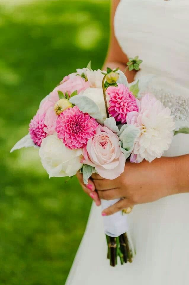 Contribution For Wedding Gift Mail : ... dahlia wedding bouquets accent bouquet cabbage roses pecy wedding
