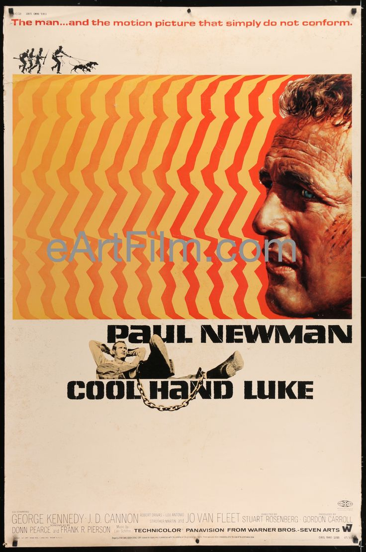 Cool Hand Luke-Paul Newman-George Kennedy-Strother Martin-40x6