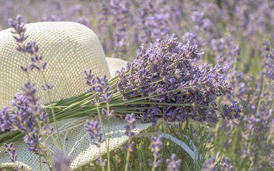 Scarica Sfondi Campo Dei Fiori Lavanda Estate Cappello Fiori