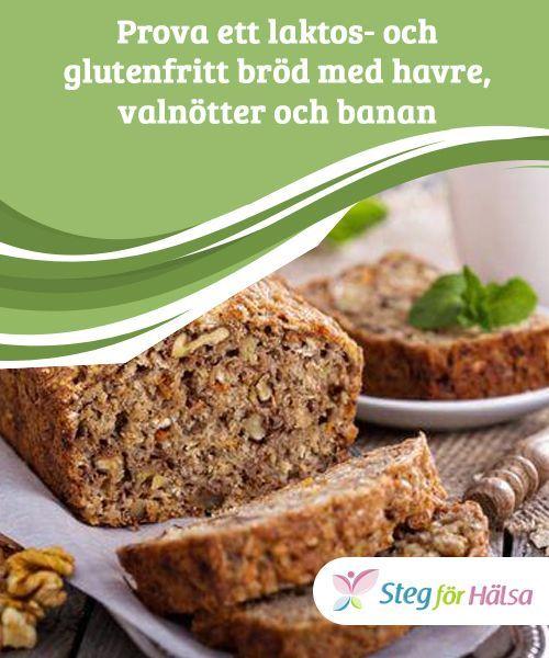 grovt glutenfritt bröd