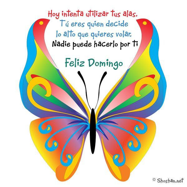 Feliz domingo ! Intenta utilizar tus alas.